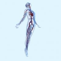 Fomentando la compresión segura con la medición del índice tobillo brazo