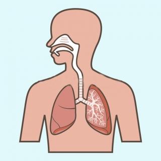 Espirometria y evaluación de la función pulmonar
