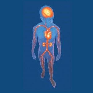 Enfermedad Arterial Periférica EAP, habitualmente asintomática