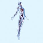 Fomentant la compressió segura amb la medició de l'índex turmell braç